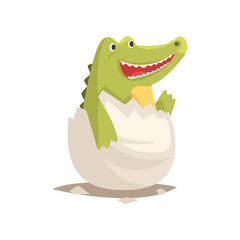 Funny newborn crocodile in broken egg shell