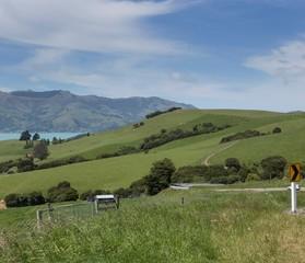 Printed roller blinds Natuur Akaroa Banks peninsula New Zealand