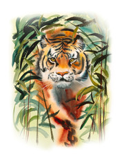 Tiger in bamboo forest. Decoration with wildlife scene. Pattern from forest inhabitant. Watercolor hand drawn illustration.