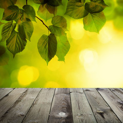 Summer Background with Green Linden Leaves, Sunshine Bokeh and Grey Empty Wooden Board with Copy space. Rustic Outdoors Template Mock up