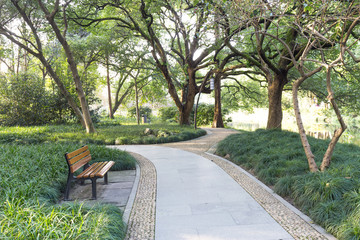 way in park in morning