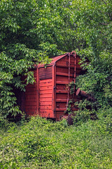 Abandoned freight wagon captured by vegetation, close view.