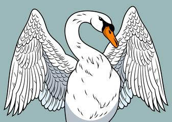 Portrait of a swan