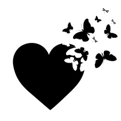 black butterfly,heart  isolated on a white
