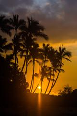 Sunset on Hawaiian Island. Palms, sky, ocean, sun