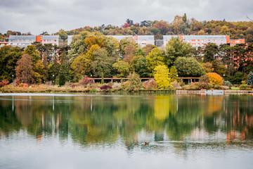 Au bord du lac du Parc de la Tête d'Or en automne à Lyon