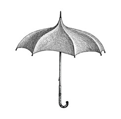 Vintage umbrella hand drawing engraving style