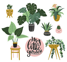 Potted  house plants isolated on the white background. Vector illustration with stylish lettering - My little garden.