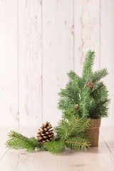Pine branch and cone on wooden background