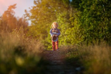 Small boy playing in autumn forest. Autumnal nature