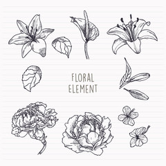Flowers and Leaves Handdrawn Element