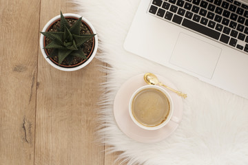Feminine workplace concept. Freelance workspace with laptop, succulent. Blogger working.