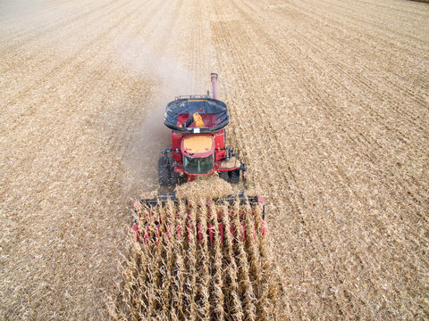 Aerial View of Combining Corn
