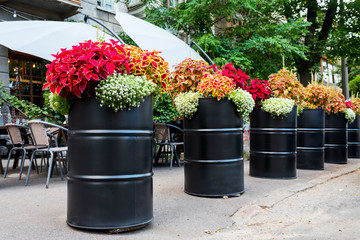 metal barrels with flowers for decoration