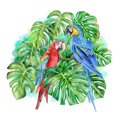 Monstera. Blue-yellow macaw. Red-and-green winged macaw. A parrot. Birds isolated on white background. Watercolor. Illustration. Picture. Template