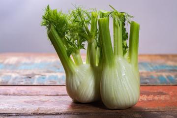 Fresh raw organic Florence fennel bulbs, close up