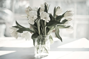 White tulips in vase by window