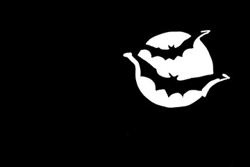 Bats Flying Across Full Moon