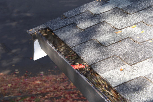 Mesh guards over troughs to prevent leaves and large debris from getting into gutters. Clogged gutters less likely, maintenance is much easier, can prevent rusting and provides added fire protection.