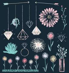 Succulent Flowers and Crystals Chalk Drawing Vector Set
