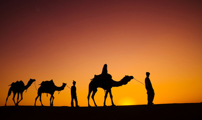 Indigenous Indian men walking through the desert with their camels.