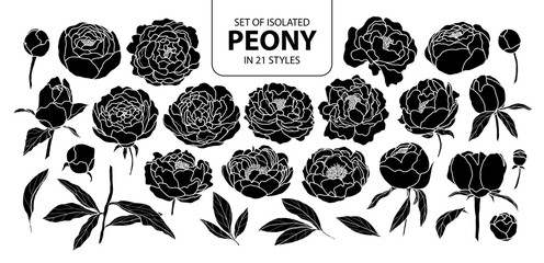 Set of isolated silhouette peony in 21 styles. Cute hand drawn flower vector illustration in white outline and black plane.