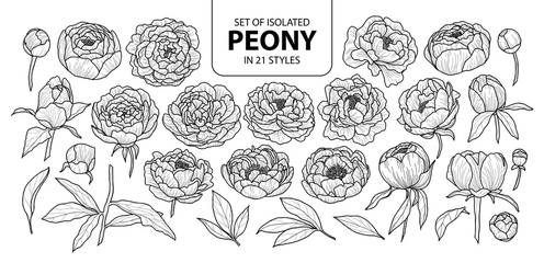 Set of isolated peony in 21 styles. Cute hand drawn flower vector illustration in black outline and white plane.
