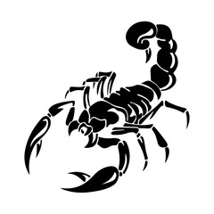 Silhouette of black scorpion, on white background,