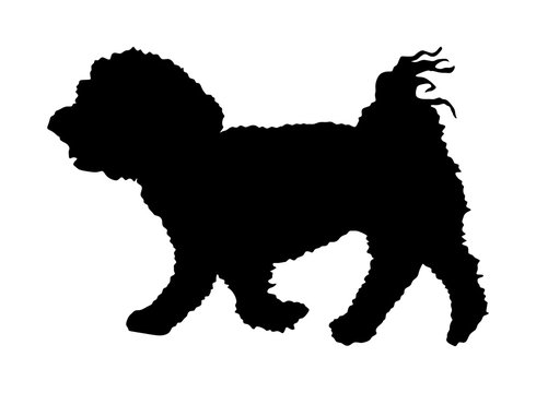 Maltese dog puppy vector silhouette illustration isolated on white background.