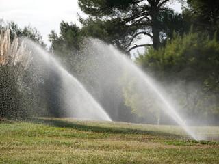 arrosage automatique pelouse