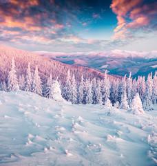 Winter wonderland in Carpathian mountains