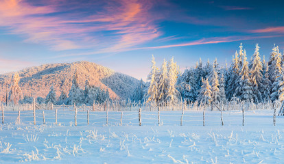Picturesque winter sunrise in Carpathian mountains.