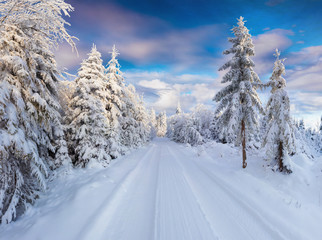 Sunny winter morning in Carpathian mountains with snowy country road.