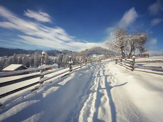 Bright winter view in Carpathian village.