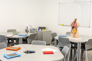 Modern classroom interior, with round tables. Anatomy model and the white board in the background