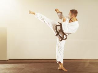 martial arts master side kick