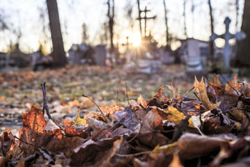 Printed roller blinds Cemetery Dry fallen leaves are gathered in a pile in the cemetery, against the background of tombstones and crosses in the sun, in the autumn evening.