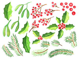 Hand painted watercolor clip art collection of evergreen plants for Christmas decoration. Mistletoe, fir tree branches, holly with red berries