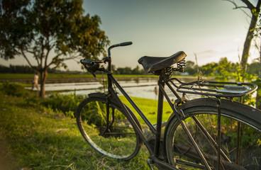 Antique Bicycle Park