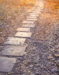 The stone pathway on the autumn grass.