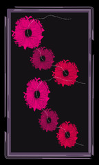 Tarot cards - back design.  Pink flowers