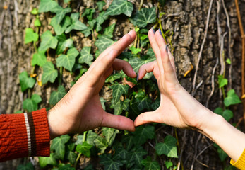 Couple in love near tree. Mans and womans hands
