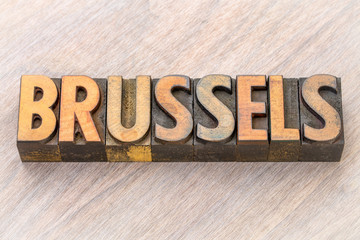 Brussels word abstract in wood type