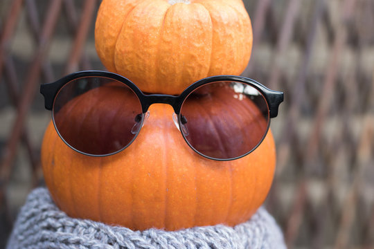 Close-up: organic pumpkin is an orange queen of autumn. Concept: healthy food with a sense of humor.