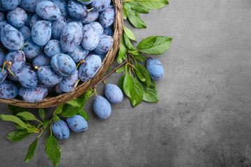 Wicker basket with fresh ripe plums on grey background