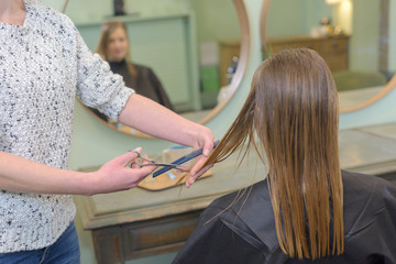 female customer having her hair cut