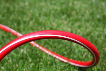 Red garden hose outdoors
