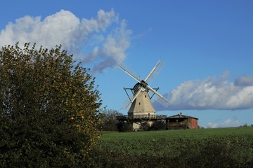 Foto auf AluDibond Mühlen picturesque dutchman windmill