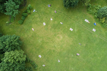 People sunbathe on a green lawn in the park, top view