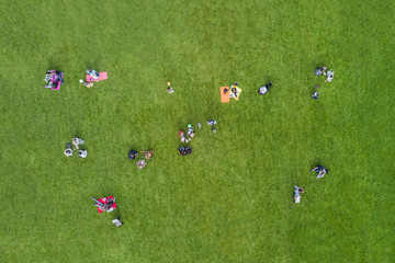 Top view of the people are resting on the lawn in the park